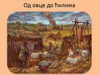 ВУНА - Од овце до ћилима